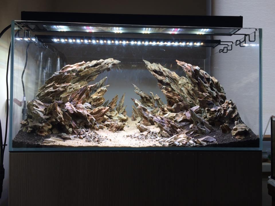 Декоративный сухой аквариум