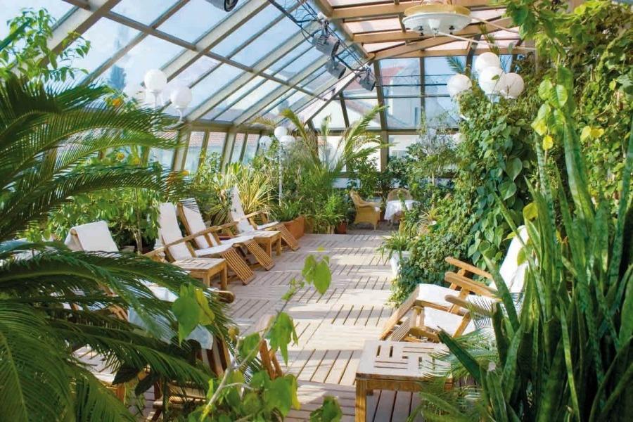 Зимовий сад в будинку